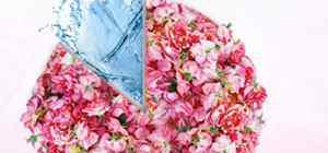 florial florihana中文叫什么 哪国的品牌
